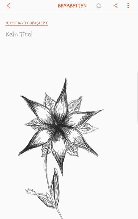 S-Pen-Zeichnung