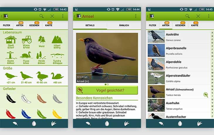 Binäre optionen demo app