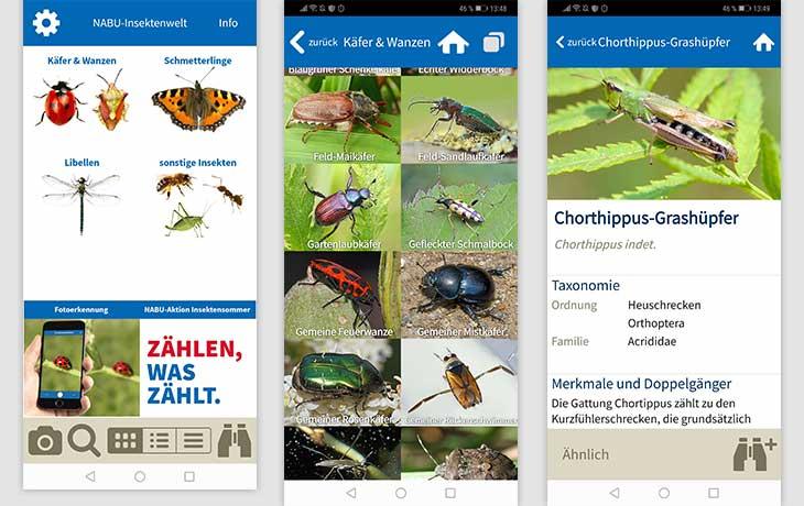 NABU Insektenwelt App Screenshot