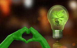 Earth Hour 2019: Grüne Hände, die ein Herz formen, daneben eine Glühbirne