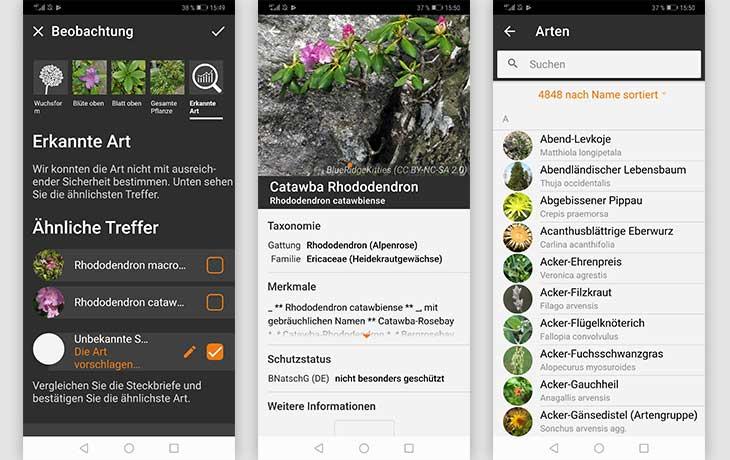 Flora Incognita Screenshots