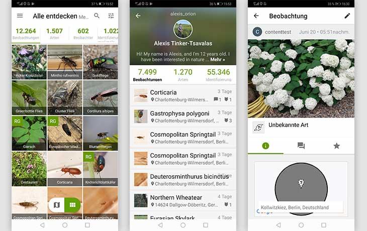 iNaturalist Screenshots