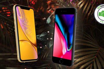iPhone Xr vs iPhone 8: Zwei Apple Handys nebeneinander