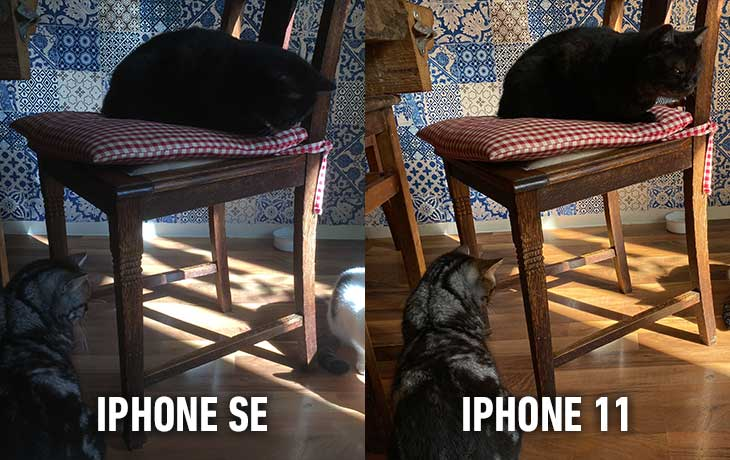 iPhone 11 vs. iPhone SE: Vergleichsbild