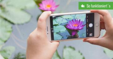 iPhone: Live-Photos deaktivieren – So funktioniert's