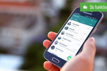 Header WhatsApp Online-Status verbergen