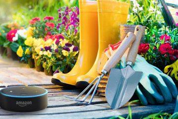 Alexa Skills: Gummistiefel, Gartenwerkzeug und der Echo Dot