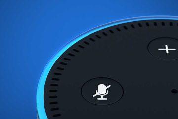 Alexa Skills: Zoom an die Sprachausgabe des Echo Dot.