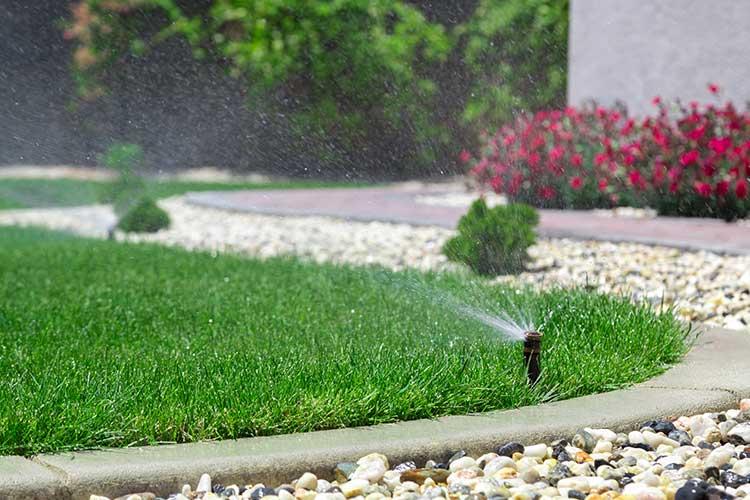 Netatmo: Rasensprenger bewässert grünes Gras