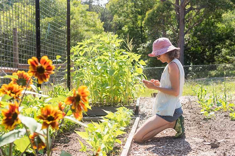 CloudRain: Frau kniet mit einem Handy in der Hand vor Blumenbeet