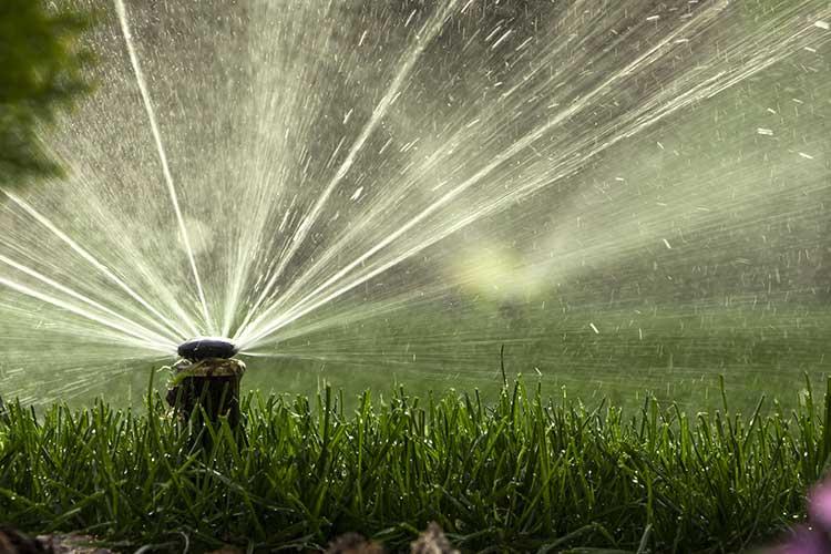 Smart Home-Rasensprenger: Rasensprenger gießt grünen Rasen.