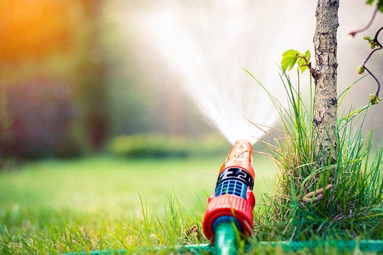 CloudRain: Gartenschlauch mit Aufsatz bewässert grünen Rasen