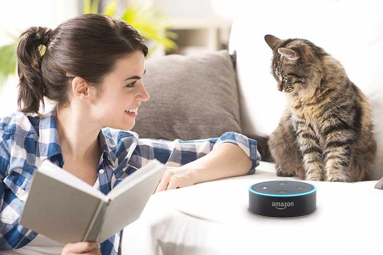 Alexa-Blueprints Tiersitter