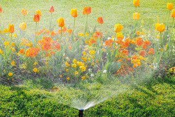 Gardena smart system für smarte Bewässerung und Rasenpflege.