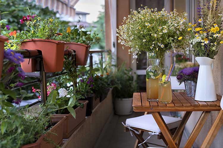 Urlaubsbewässerung: Balkon mit vielen Blumen und einem Tisch, auf dem eine Karaffe und ein Glas mit Saft stehen